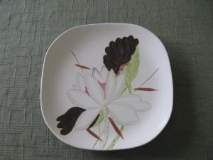 I have the following Red Wing dinnerware and am curious of its value. Redwing Pottery Inventory June 16 2011 12 Dinner Plates (4 are chipped) 9 Coffee Cups ... & Lotus Pieces | Red Wing Collectors Society | Red Wing Pottery Union ...